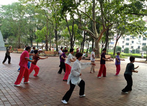 Chinezen in stadspark